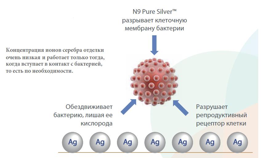 bacteria atac.png